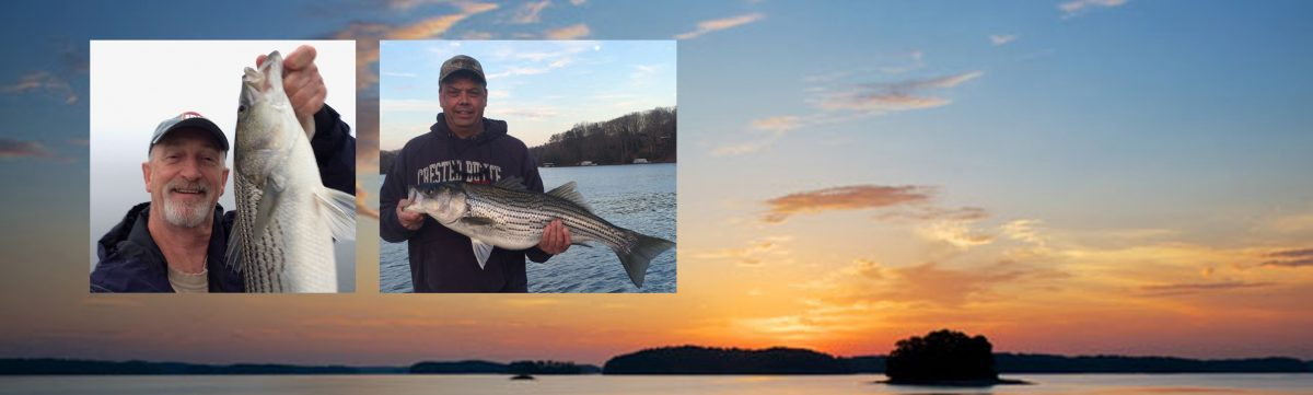 Lanier Striper Expeditions Blog